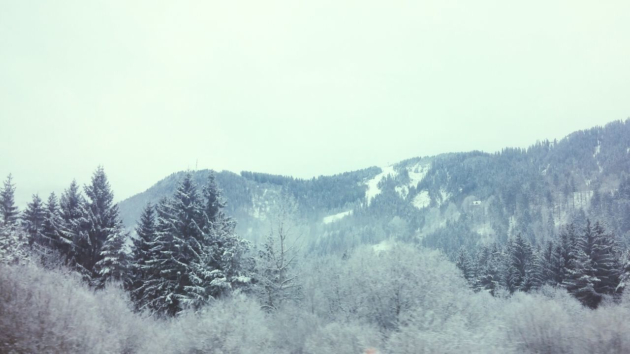 Returning Home On The Way Home The Alps Snow Covered Landscape Trees White Snow ❄ It's Cold Outside Border Crossing Showcase: January