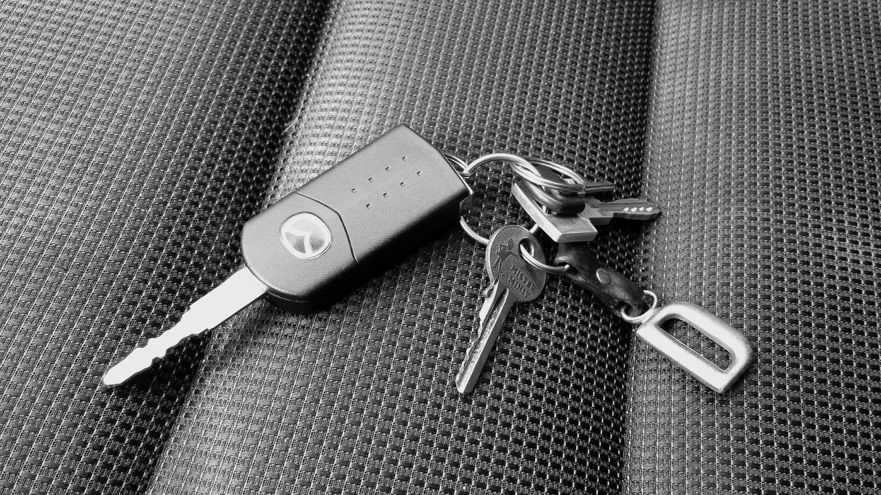 Car Keys Keys Autoschlüssel Schlüsselbund Shades Of Grey Black And White Black & White Still Life Stillleben Deceptively Simple