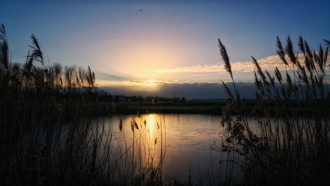 On Thin Ice Lake Landscape Nature No People Outdoors Reed - Grass Family Reflection Lake Sky Sunset Wetland