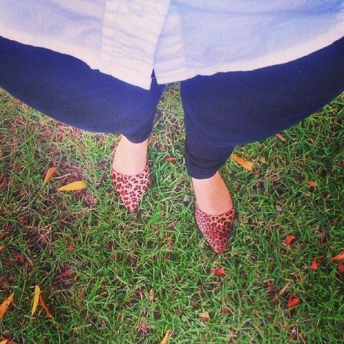 Após o tédio de uma quarta-feira saindo do trabalho, uma pausa pra tirar uma foto do meu pé. :p ♥ Newshoe Animalprint Annekanner ... in love.