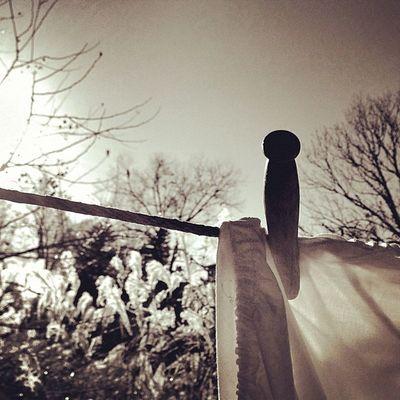 Late afternoon laundry. #rise #snapseed #dramaticb&w #instatagapp #instagood #iphonesia #photooftheday #instamood #igers #instagramhub #picoftheday #instadaily #webstagram #instagramers #statigram #igaddict #iphoneartists #iphoneonly #jj_forum #instagramm Instagramhub Webstagram WeAreJuxt Ifshowcaseme Iphoneonly Mobileartistry Photooftheday Instadaily Iphonesia Instatagapp Picoftheday Dramaticb Igers_philly Jj_forum Snapseed Igaddict Instamood Instagrammers Rise Instaaddict Igers Canvaspop Jj  Iphoneartists Instagramers Igersphilly Instagood Mnolt Statigram Igla_challenge_leadinglines