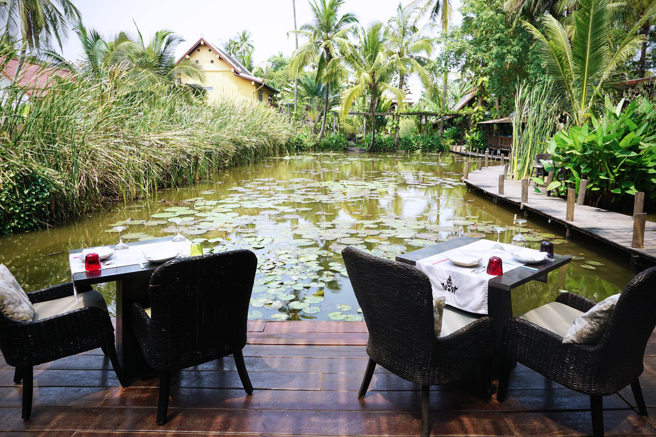2017 ASIA Beauty In Nature Cafe Chair Day Laos Lotus Luang Phabang Luang Prabang Luxury Manda De Laos Nature Outdoors Outside Plant Pond Resort Restaurant Summer Table Tree Tree Water