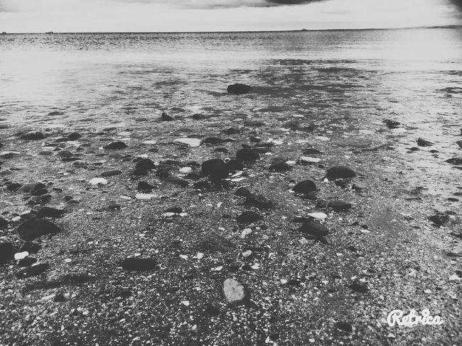 The beach🌊❤️ Beach Seaside Sea Water Stones Shells Beach Photography Beachlife Beachfront Beachfinds