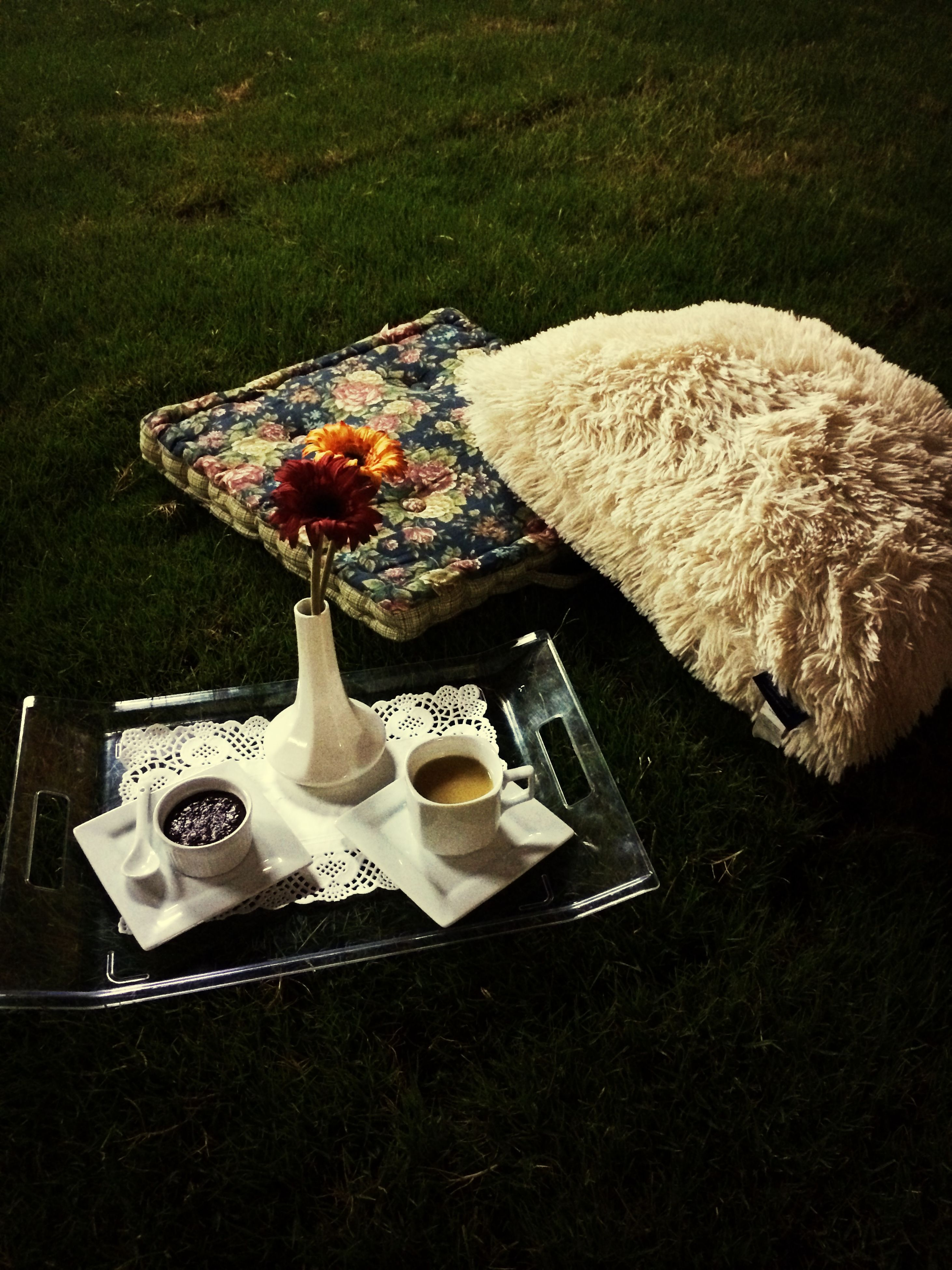 table, high angle view, still life, grass, food and drink, indoors, absence, chair, no people, freshness, empty, food, plate, field, day, grassy, elevated view, nature, sunlight, green color