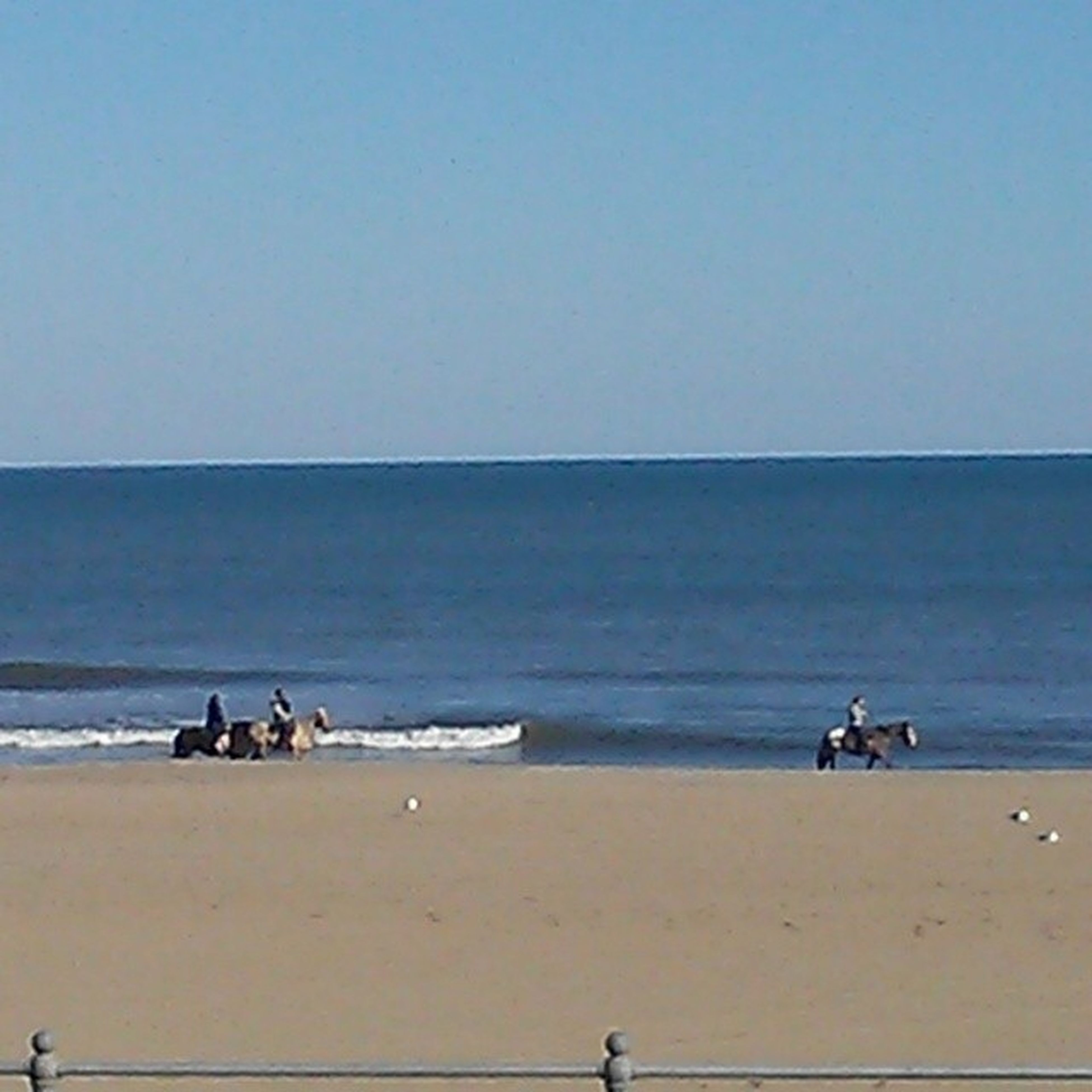 Gorgeous day for Horseriding on VirginiaBeach