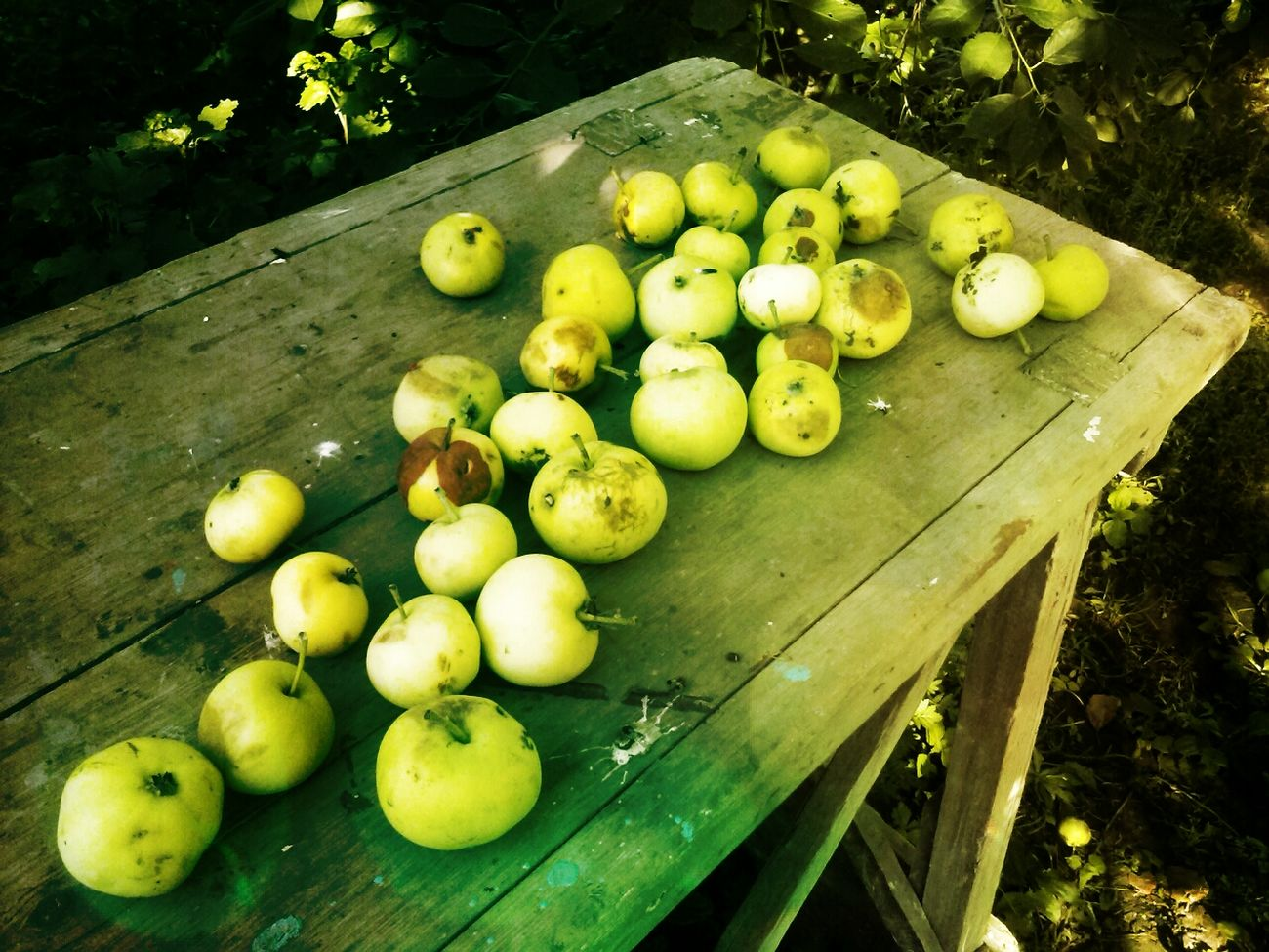 яблоки Apple Fruct