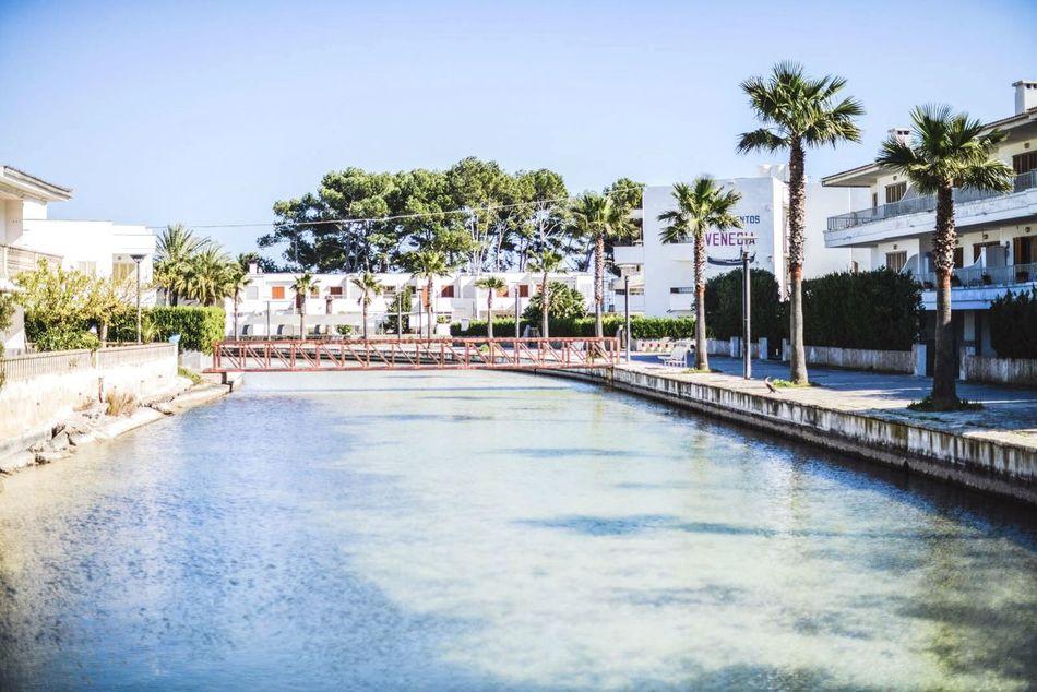 Open Edit Water Palm Trees Exploring Traveling Holiday Beautiful Surroundings Hello World Taking Photos Enjoying Life