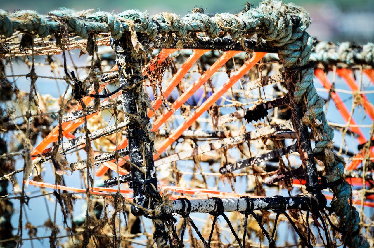 Close-up Day Mesh Nature Nautical Equipment Netting No People Orange Outdoors