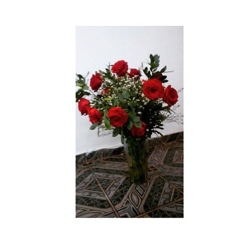 Adoro rosas vermelhas,assim como adoro a vida. I love red roses, and love life.. Roses Vermelha Amô Adoro vida amor love peace lindas minhas bjos ....