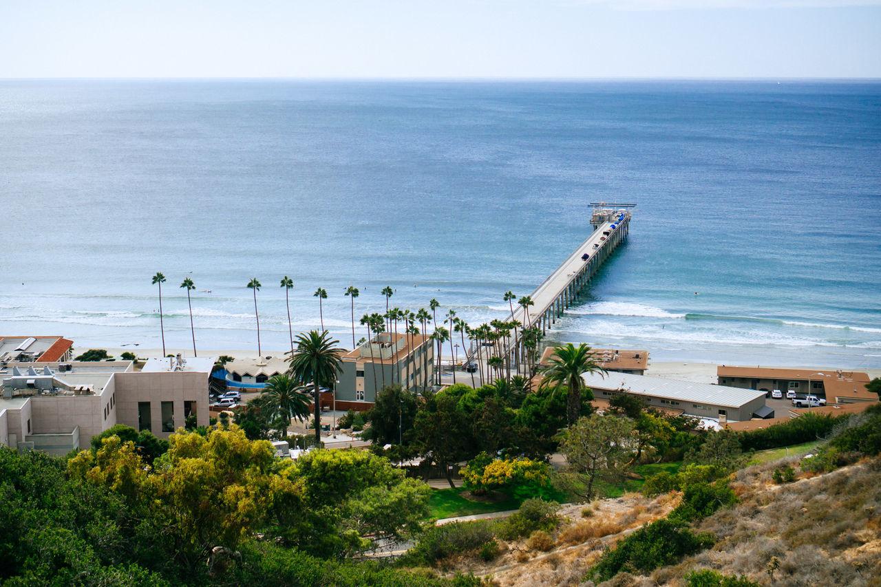 Ocean Ocean View Palm Tree Pier