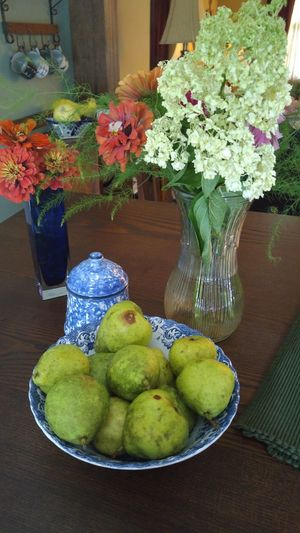 Pears Fresh Picked Table Summertime Kitchen Life Kitchen Table Fresh Fresh Flowers Colour Of Life Home Is Where The Art Is