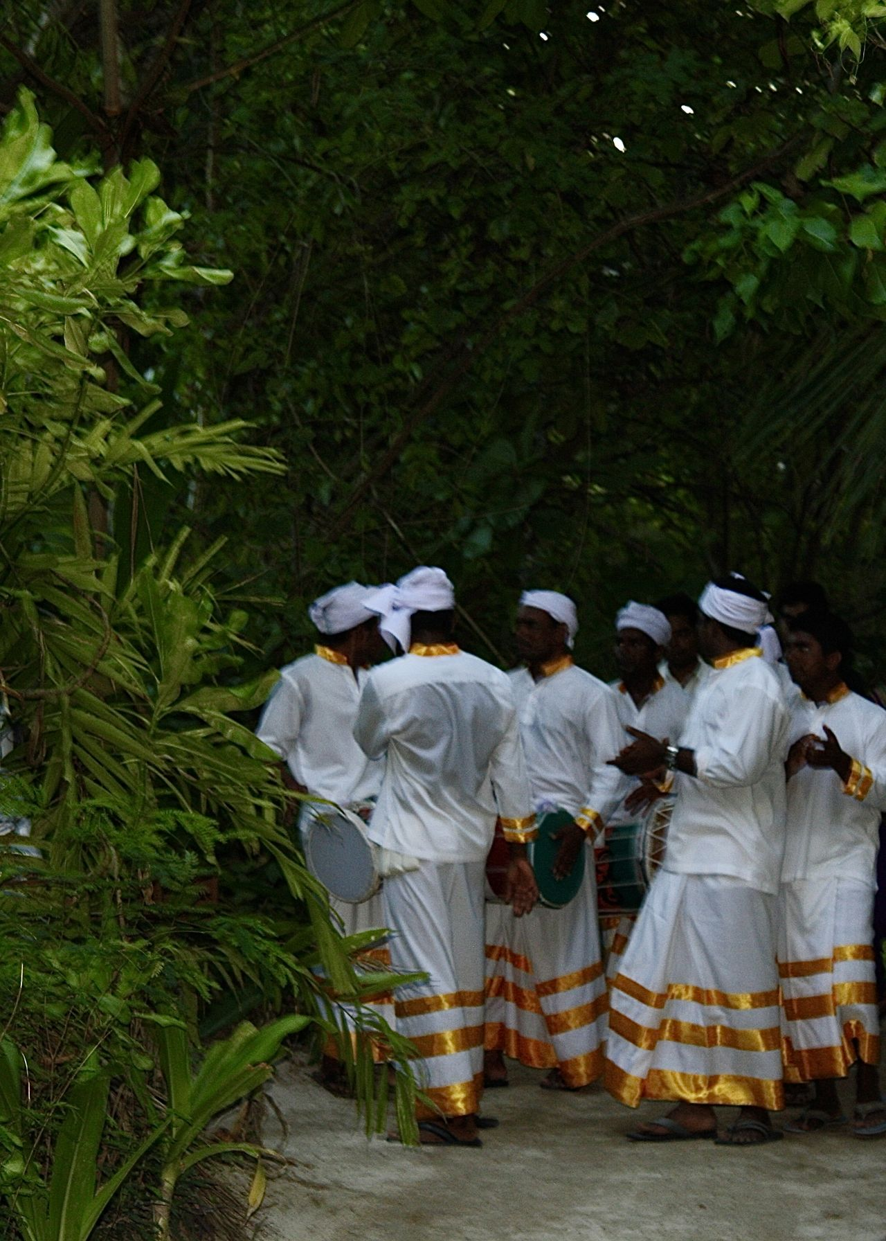 traditional dancers in tropical garden, maldives Beach Colors Dancers Dancing Environment Garden Golden Green Greenery Large Group Of People Light Maldives Men Occupation Outdoors People Sand Togetherness Tradition Traditional Traditional Clothing Travel Tropical White