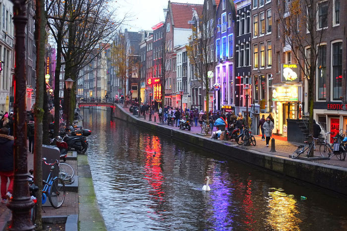 Taken in the Red Light District of Amsterdam, Netherlands. December 2017 Amsterdam Amsterdam Canal Christmas Netherlands Red Light District Winter Amsterdamcity Bird Canal City Europe Holland Redlight Redlightdistrict River Sexygirl Swan Water Waterway