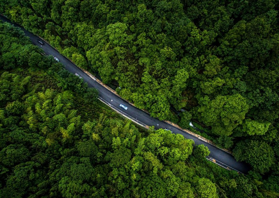 Beautiful stock photos of wald,  Abundance,  Aerial View,  Beauty In Nature,  China