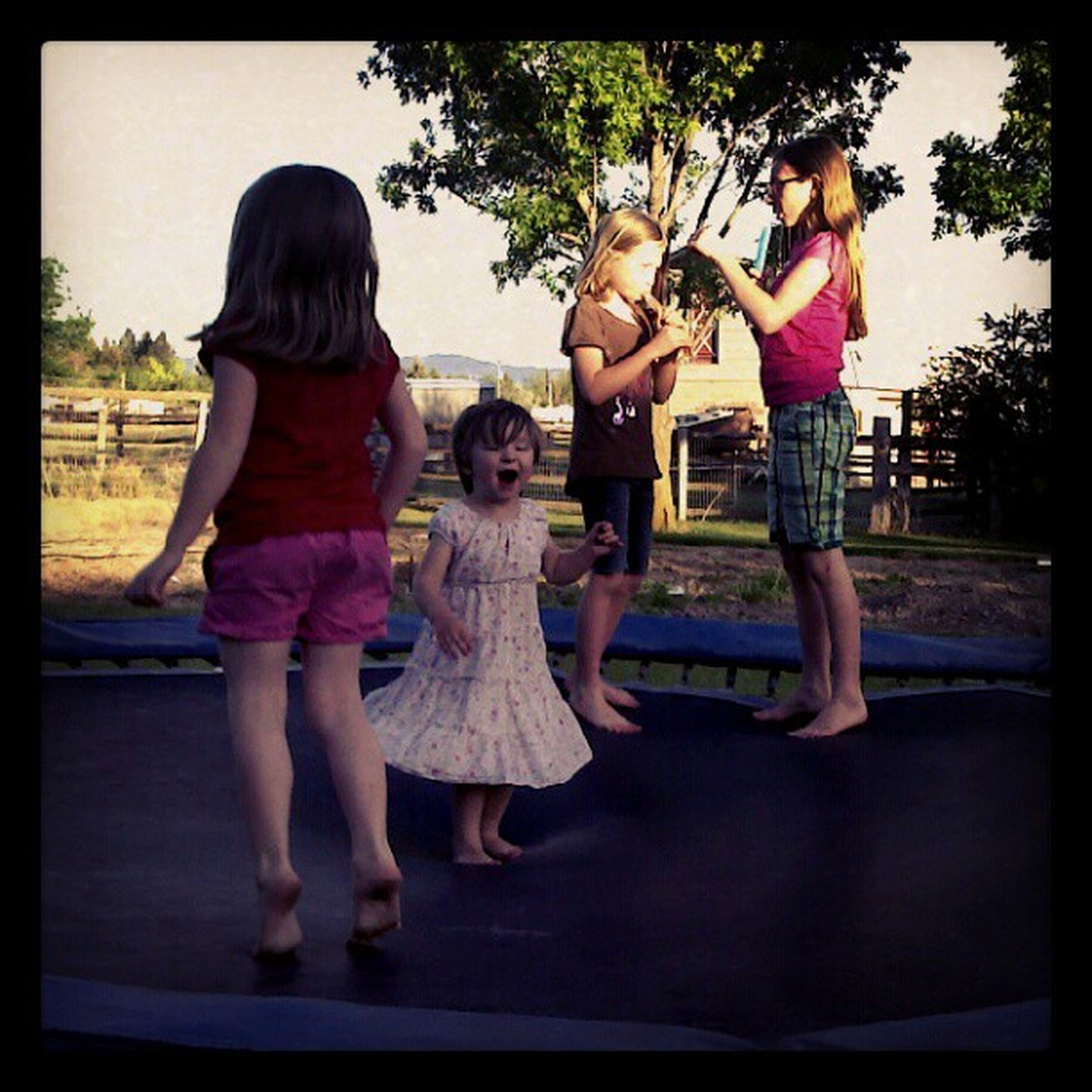 transfer print, lifestyles, leisure activity, togetherness, casual clothing, childhood, bonding, full length, love, auto post production filter, girls, person, tree, boys, standing, elementary age, fun, enjoyment