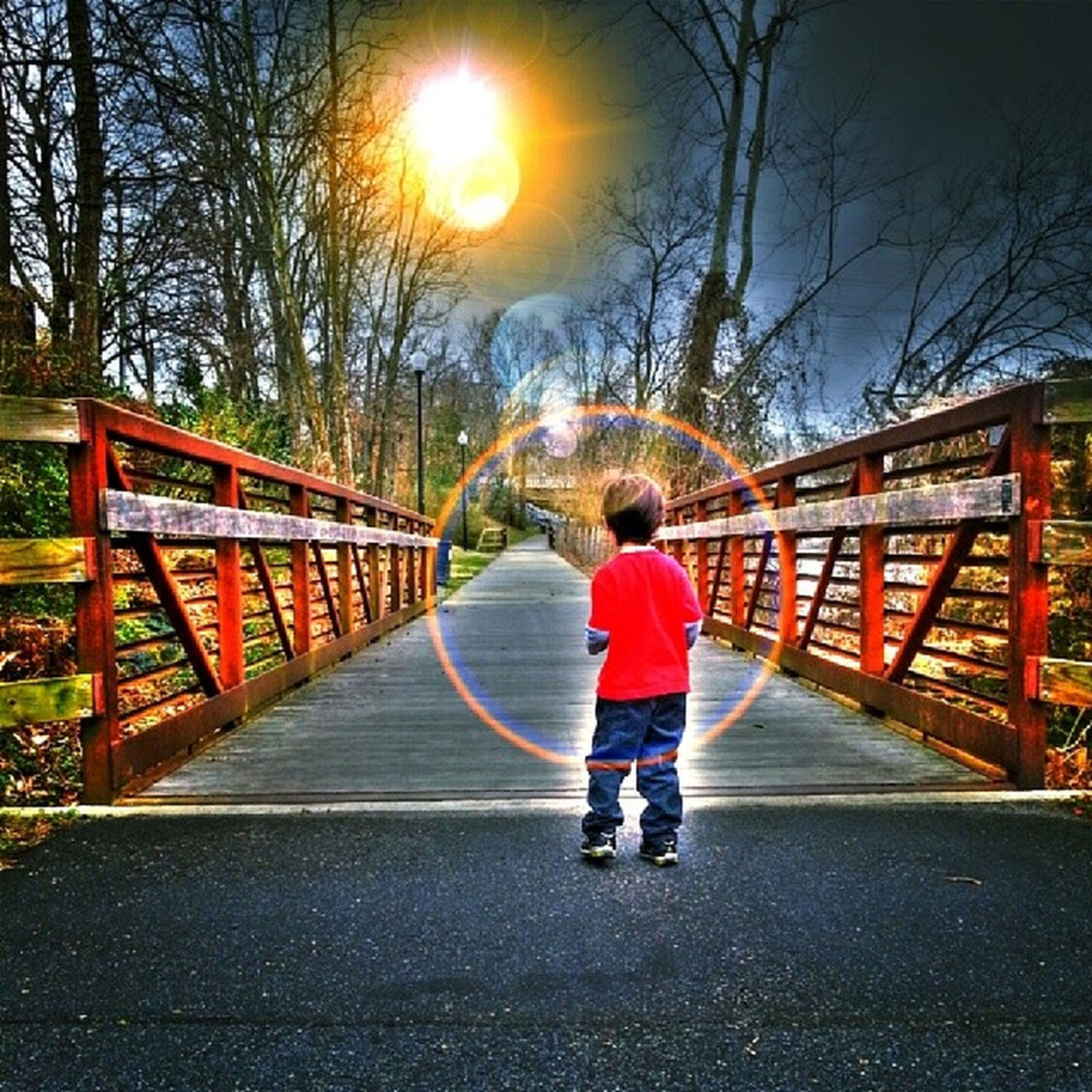 full length, the way forward, rear view, tree, lifestyles, walking, leisure activity, diminishing perspective, bare tree, railing, connection, bridge - man made structure, childhood, casual clothing, boys, transportation, vanishing point, street