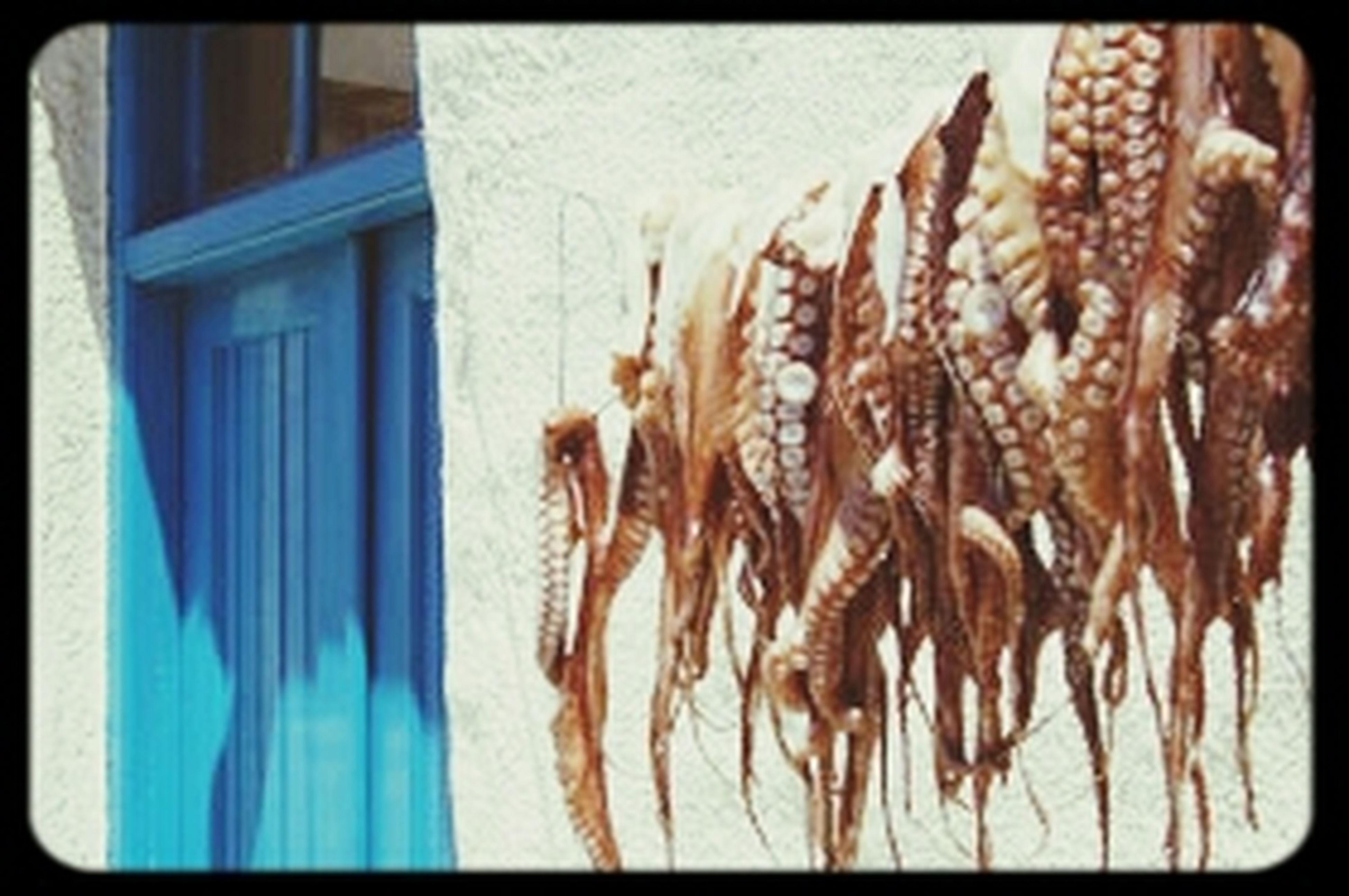 Streetphotography Beatiful Travel Photography Grecia