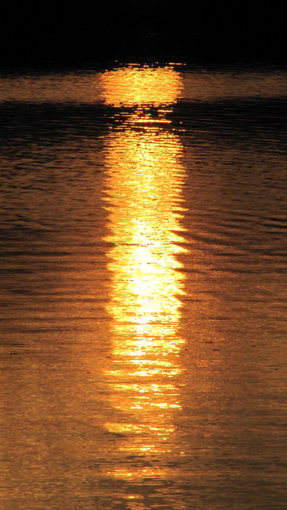 Ripples Sunny Golden Gold Lake рябь солнце золото озеро Glitch