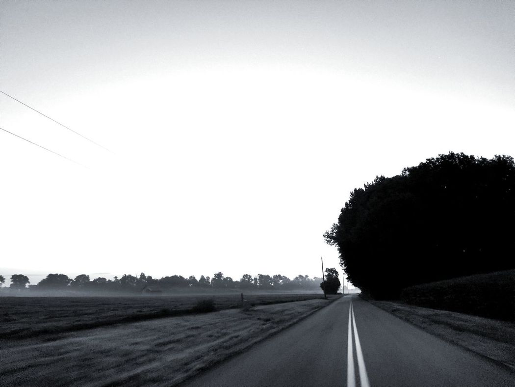 EyeEm Selects Road Sunset No People The Way Forward Tree Beauty In Nature Outdoors Sky Landscape Nature Scenics Day Autumn Beauty In Nature Blackandwhite Photography Black & White