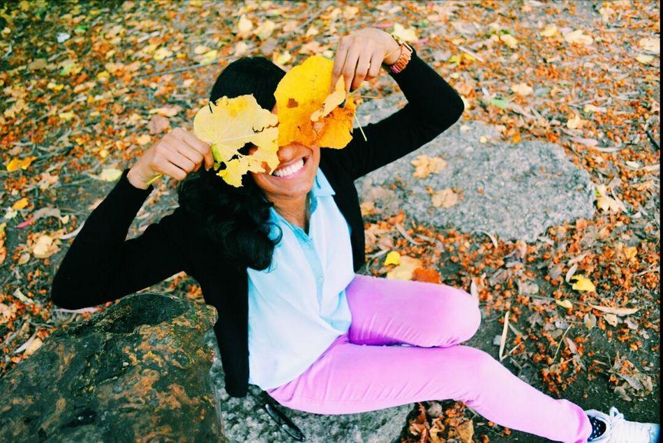 Authentic Moments Outono Folhas Secas  Quatroestaçoes