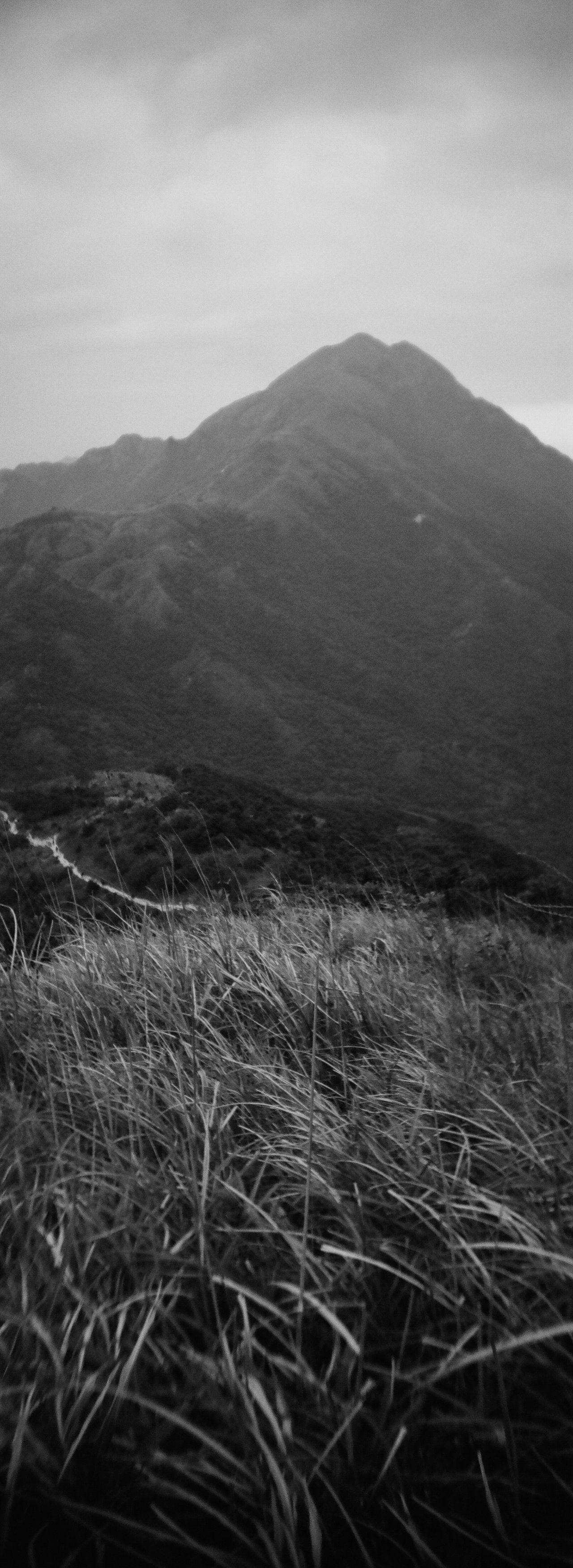 大東山 B&w Street Photography Film Photography HongKong Lomography Sprocket Rocket Panorama Ishotfilm