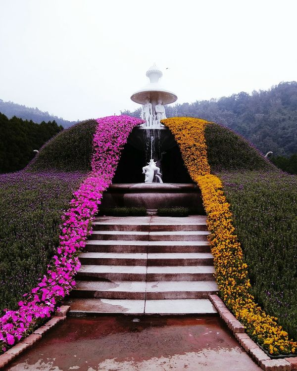 Nantou,Taiwan FormosaAboriginalCultureVillage 九族文化村 Parks Flowers :) Nature Nature Lover Nature Photography Parks And Recreation Park View Millennial Pink