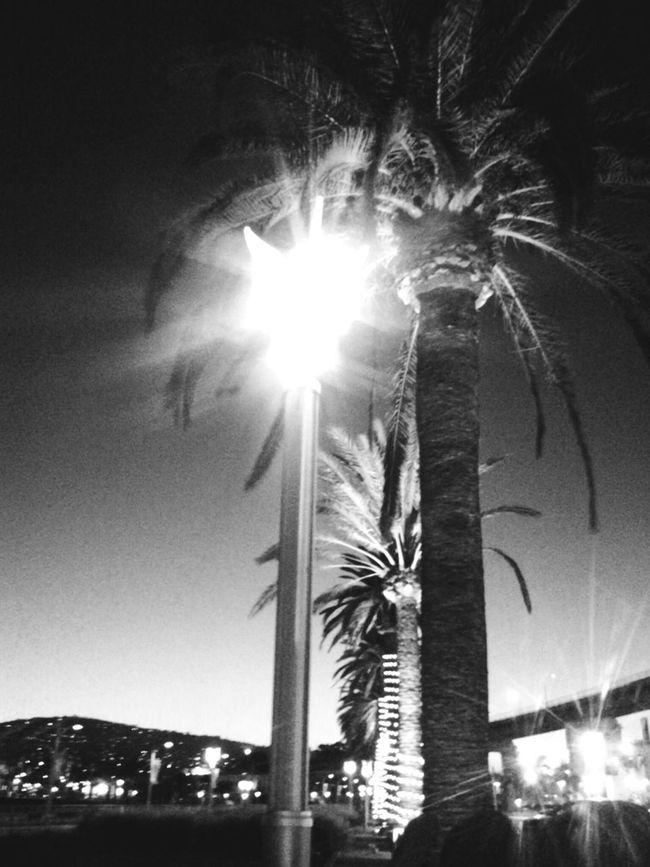 Port City Of San Pedro Getty&eyeem Black And White Photography