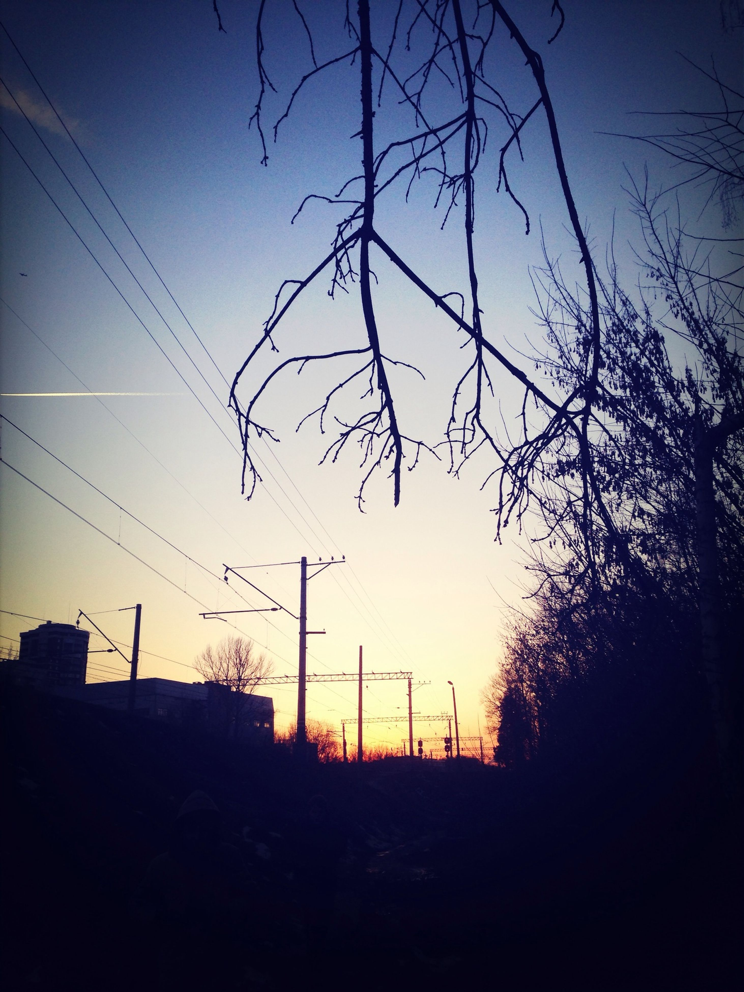silhouette, sunset, clear sky, blue, sky, bare tree, tree, low angle view, tranquility, dusk, nature, electricity pylon, branch, landscape, beauty in nature, dark, fence, copy space, scenics, tranquil scene