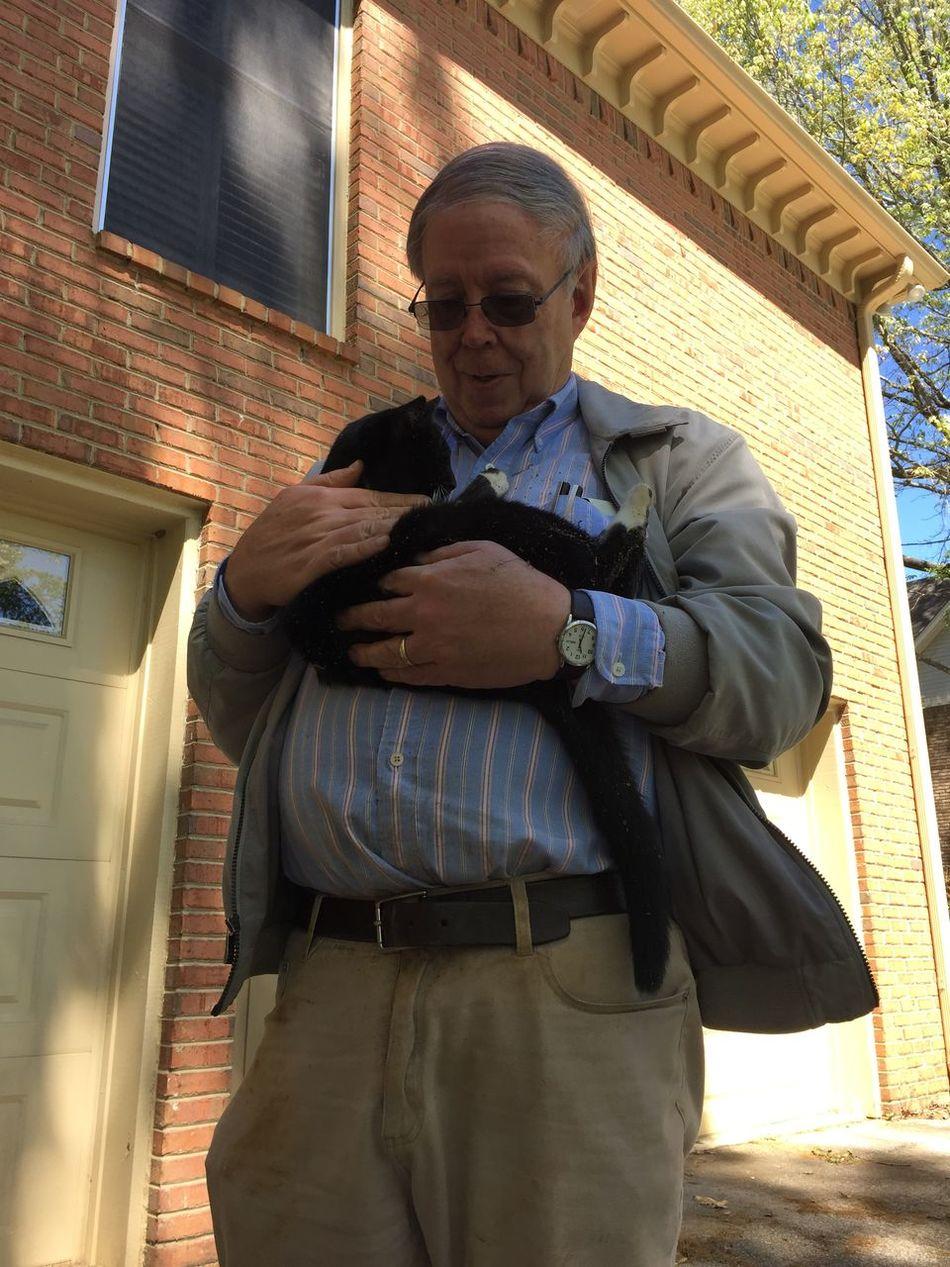 Cat Cuddle Cute Daylight Feline Kitten Man Outside