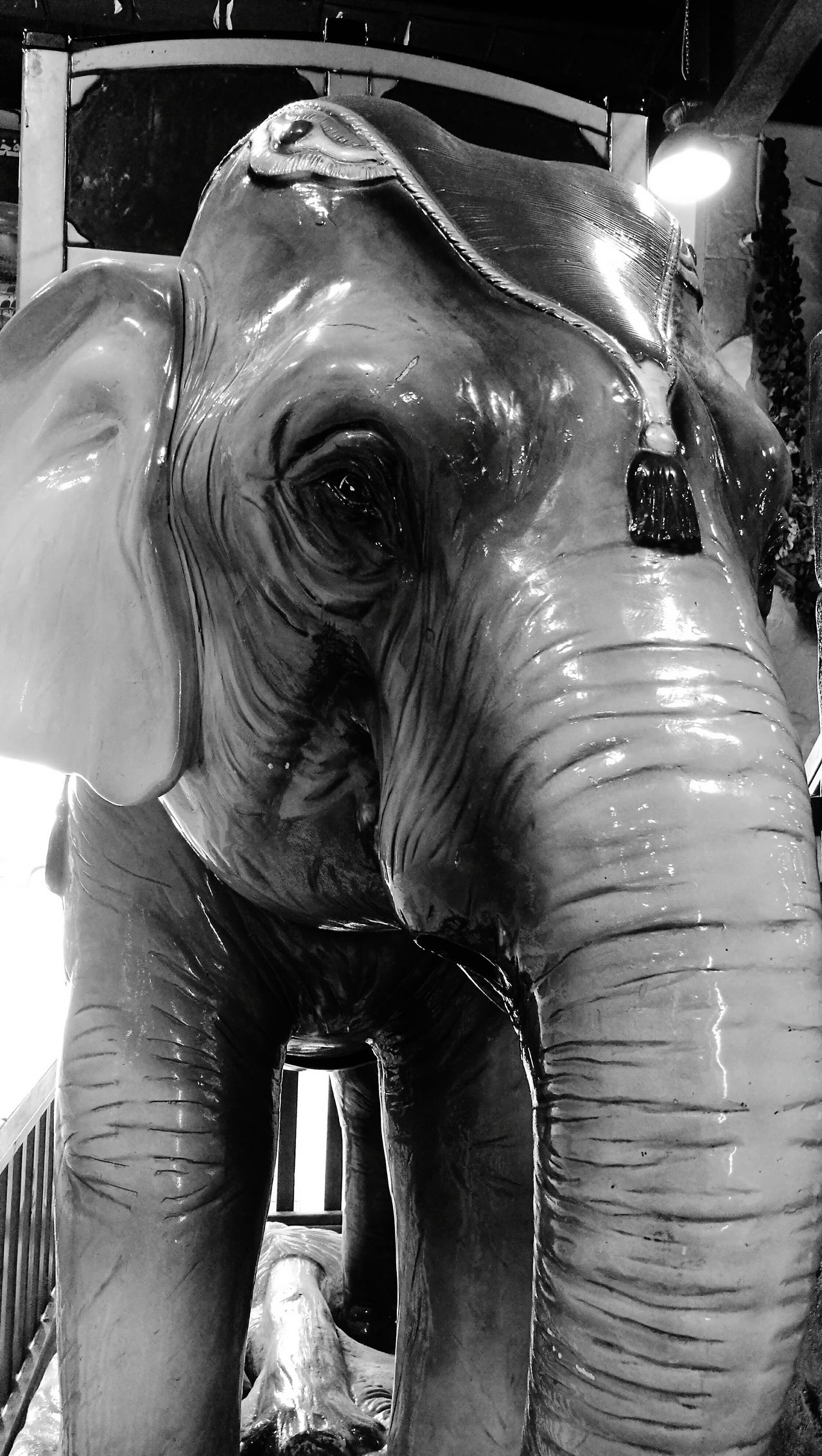EyeEmNewHere Close-up Elephant Monochrome Photograhy Arts Culture And Entertainment Playgrounds Indoor Photoshoot Amusememt Park Games For Children Animal Themes Carnival Elephant Ride Close-up Shot Indoors  Close Up Technology Winter_collection Photography Themes