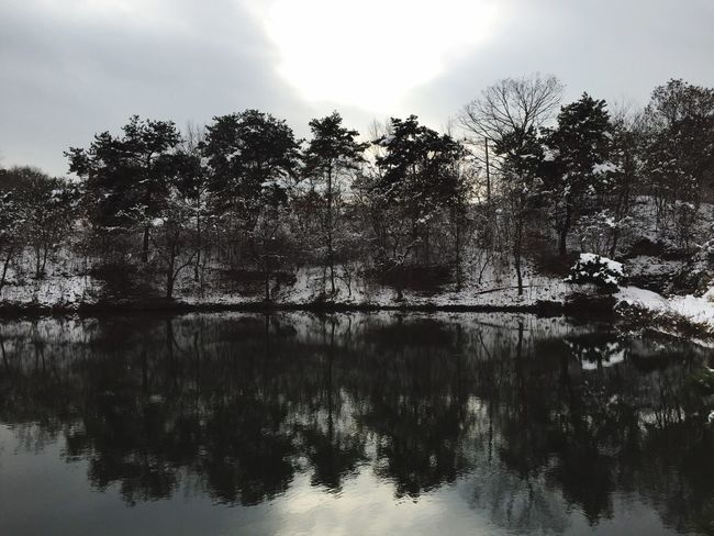 Taking Photos , Emotional Photography // Clouds And Sky Trees Winter Trees Reservoir ... Trees Reflected In The Water