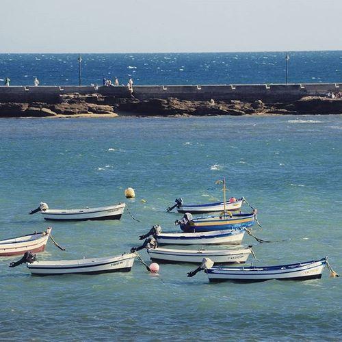 Grupete de Barcas tomando el sol de Cadiz