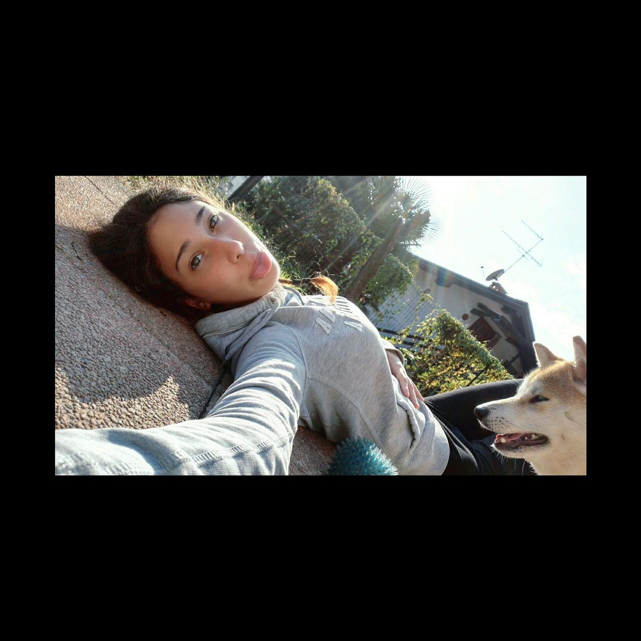 Dog❤ Shiba Inu Relax Photo Potography Love Animals Cheese! Mlmlml