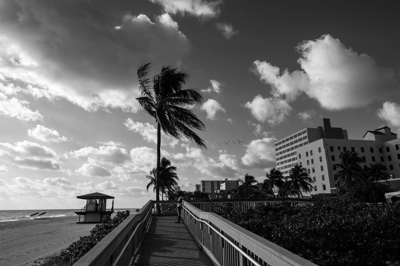 Release Architecture Beach Life Beach Photography Beauty In Nature Blackandwhite Photography By The Sea Cloud - Sky Clouds And Sky Day Enjoying Life Enjoying The View Fujifilm_xseries Natural Light Nature No People Ocean View Oceanside Outdoors Palm Tree Palm Trees Photographyisthemuse Seaside Sky