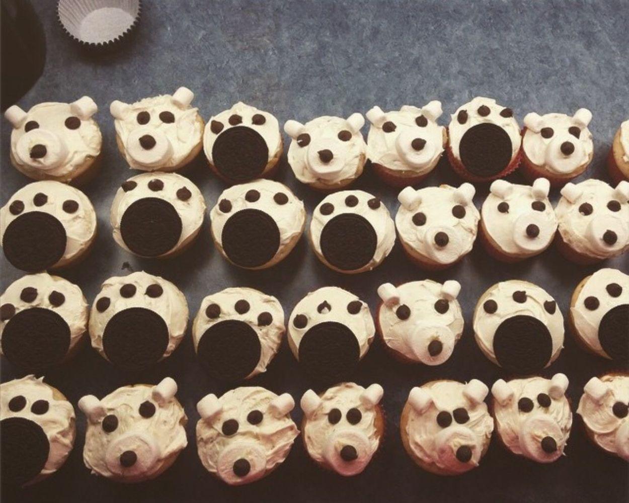 Large Group Of Objects Abundance Indoors  No People Variation Close-up Arrangement Day Polar Bear Cupcakes Kids Baking