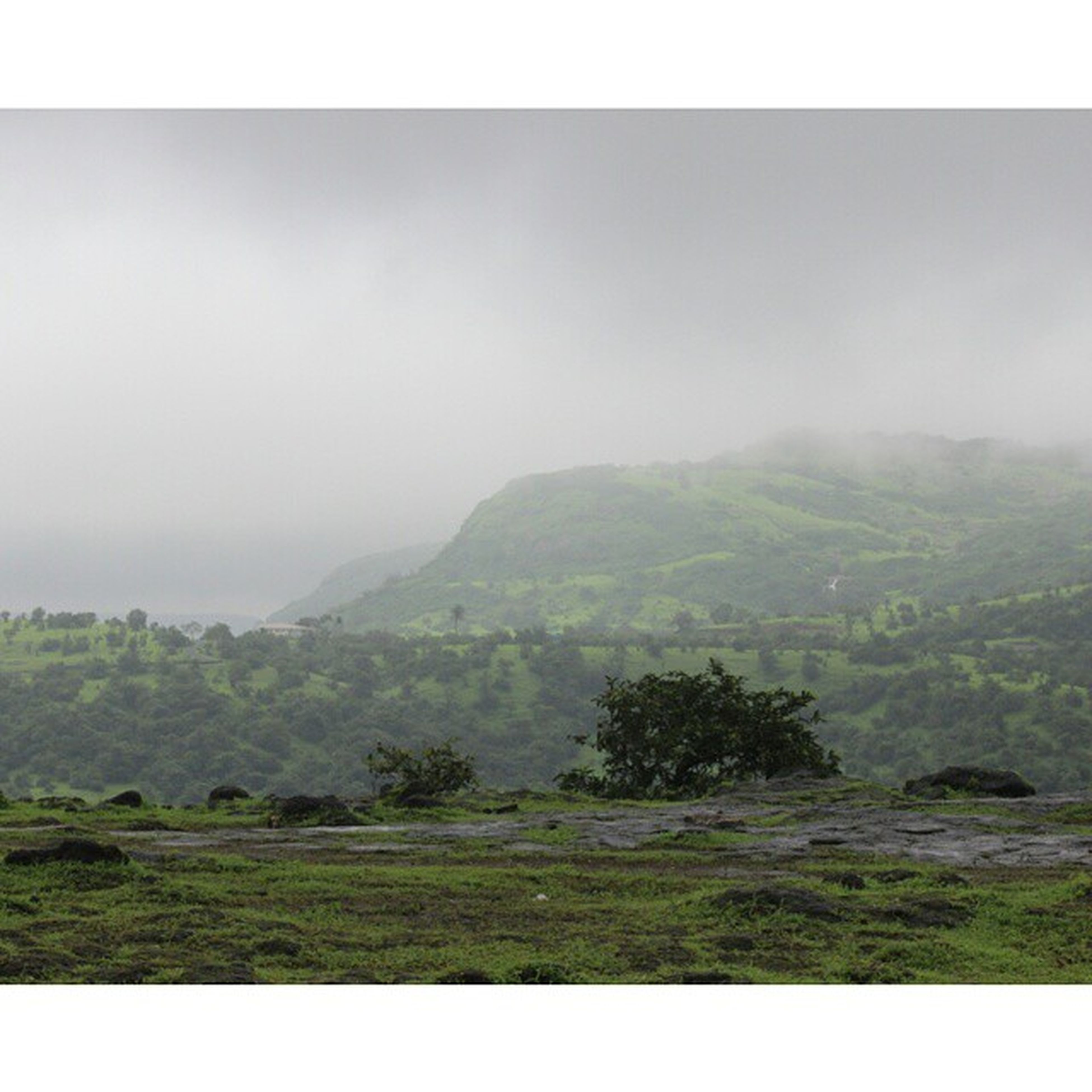 mountain, tranquil scene, tranquility, scenics, landscape, beauty in nature, transfer print, tree, nature, mountain range, auto post production filter, green color, sky, grass, non-urban scene, fog, idyllic, hill, growth, lush foliage
