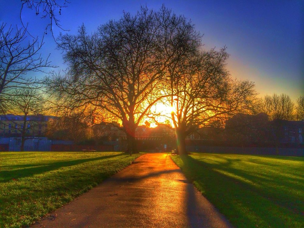 Sunset Winter Hackney Downs Hdr_Collection Capture The Moment