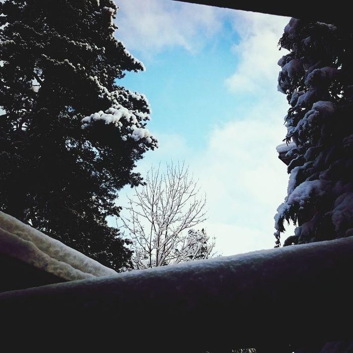 Sky Blue Sky January 2015 Taking Photos Enjoying Life