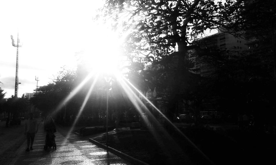 Sunset Silhouettes Silhouette_collection Eyeem Silhouette Light And Shadow Sun_day Bnw_friday_eyeemchallenge Bw_friday_challenge EyeEm Best Shots Monochrome - Santossp