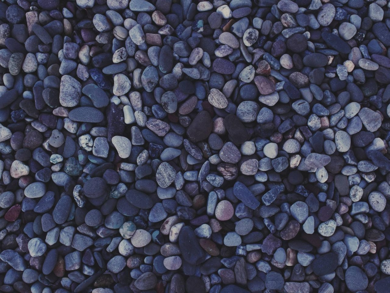 Abundance Close-up Full Frame Large Group Of Objects Nature No People Outdoors Pebble Pebble Beach