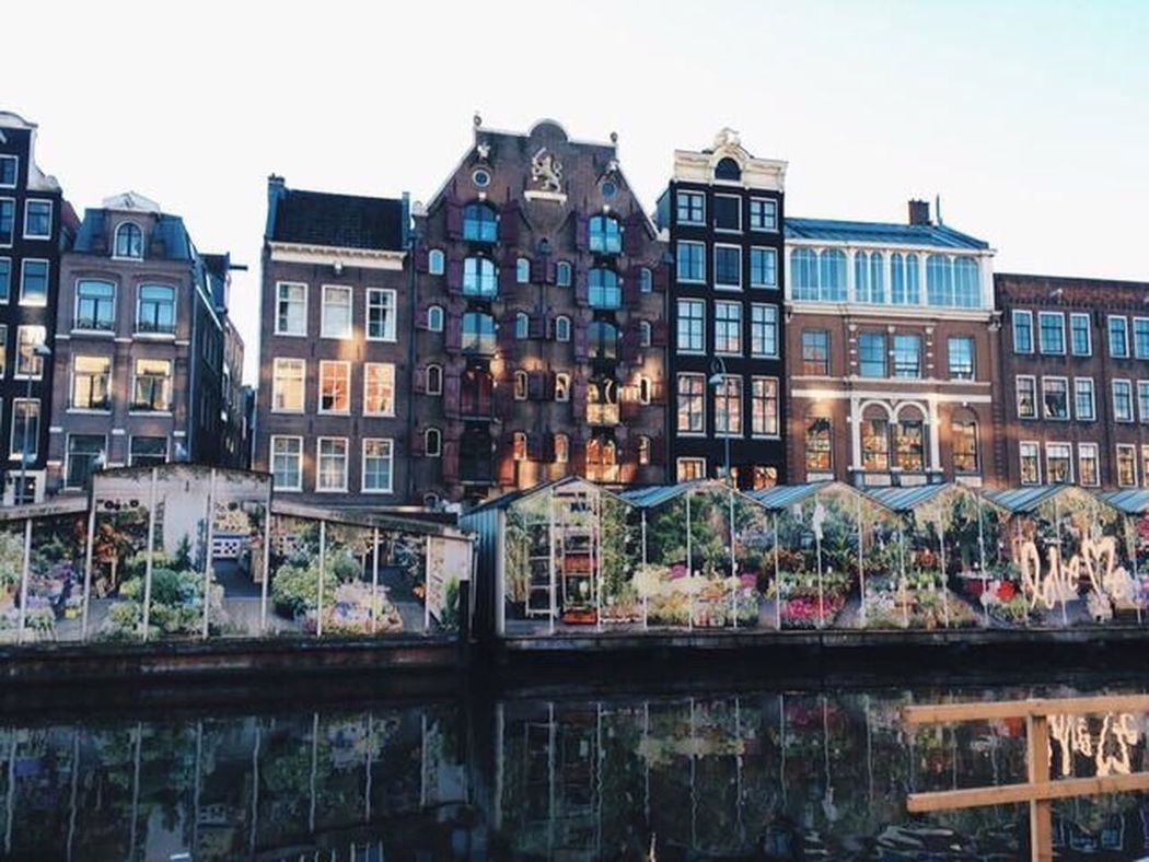 Travel Architecture Building Exterior Outdoors Travel Destinations Bloemenmarkt Amsterdam Amsterdamcity Tulips Amsterdam Canal Traveling City