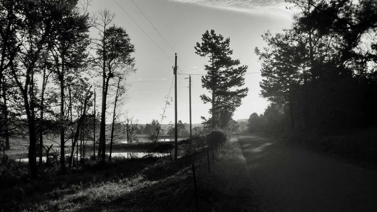 Black And White Photography From My Point Of View Blackandwhite Light And Shadow Arkansas Taking Photos EyeEm Nature Lover Nature Check This Out Eyeemphotography My Best Photo 2015 Fine Art Photography EyeEm Best Shots Country View Black & White EyeEm Bnw EyeEm Gallery Capture The Moment Outdoors Nature At Your Doorstep Beautiful Enjoying Nature