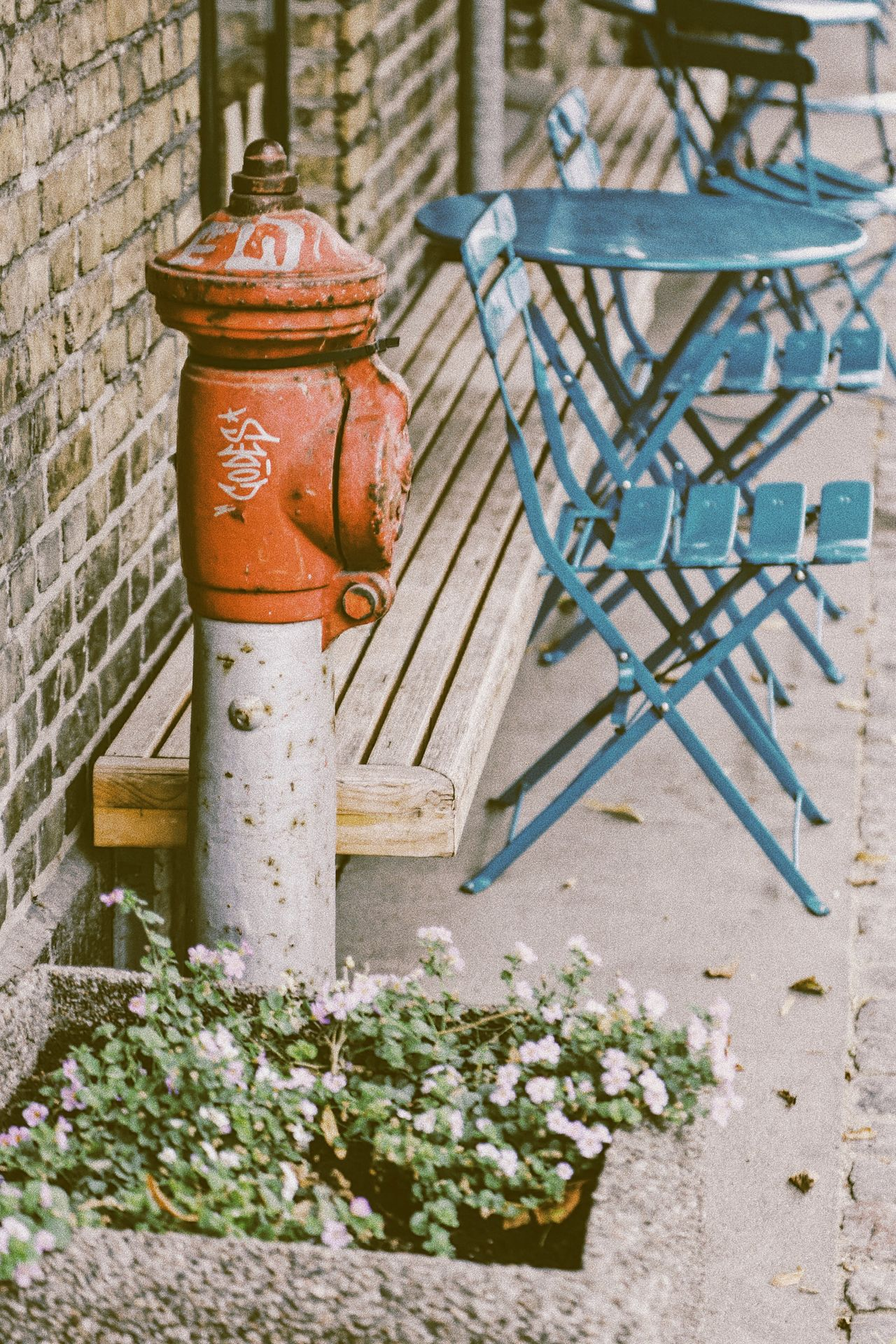 Outdoors No People Plant Day Close-up Nature Fire Hydrant Vintage Vintage Style Street Photography Cafe Outdoor Photography Furniture Design Rustic Style Rustic Charm Rustic Beauty City Street Vintage Stuff Blue Idyllic Detail Firefighter