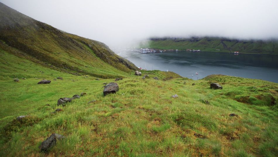 looking downhill to the seydisfjordur fjord in eastern iceland. Agriculture Beauty In Nature Cloud Day Fjord Fog Foggy Foggy Morning Hiking Iceland Lake Landscape Nature No People Outdoors Scenics Seyðisfjörður Sky Tourism Trail Travel Destinations Tree Uphill Water Way