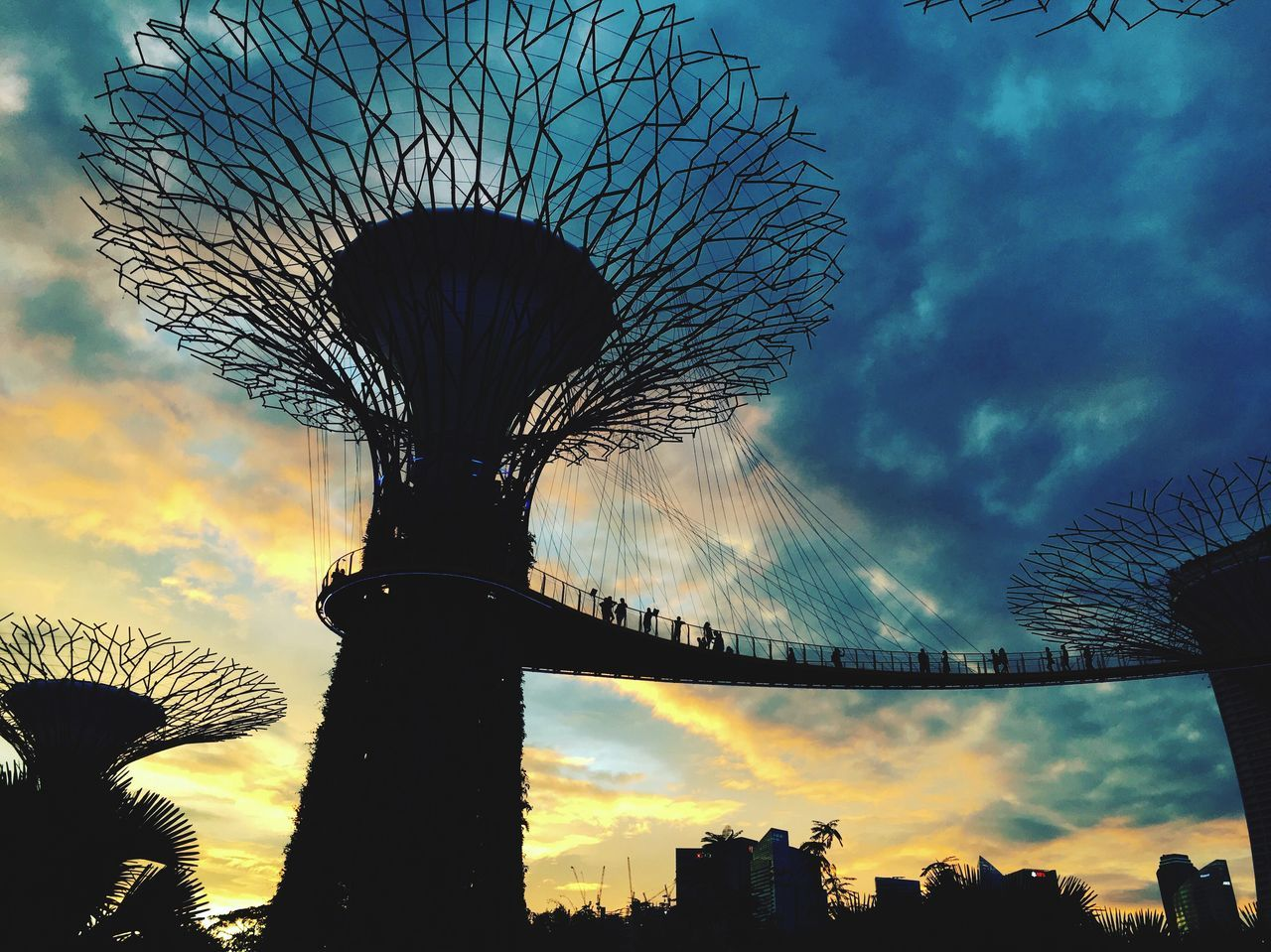 Gardens by the Bay Sky Low Angle View Cloud - Sky Sunset Tree Built Structure Outdoors Beauty In Nature Architecture