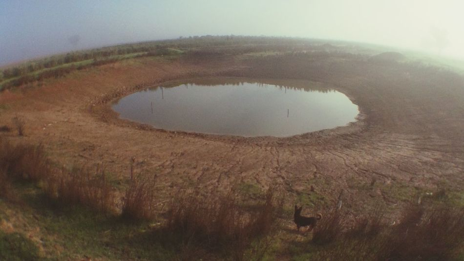 We need rain! Check This Out Taking Photos Olloclip EyeEm Nature Lover Farm Dam Bestoftheday Procamera8 Water Reflections