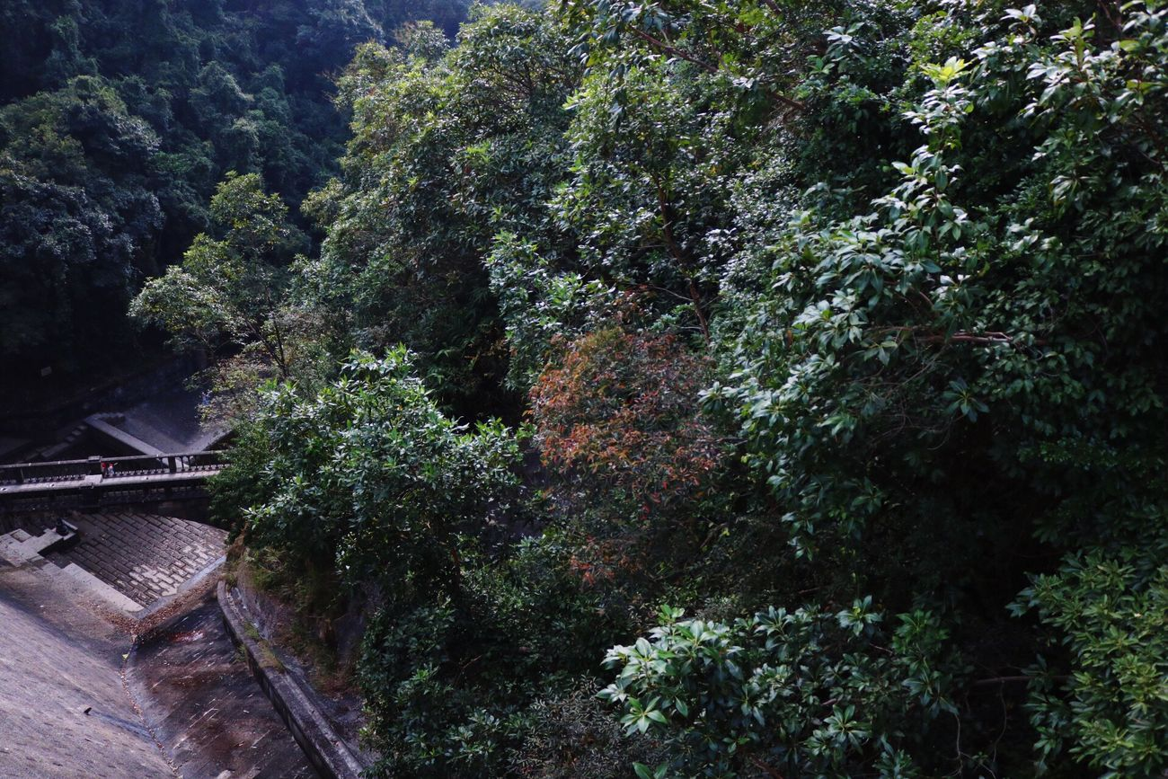 hiking with stunning view Nature HongKong First Eyeem Photo