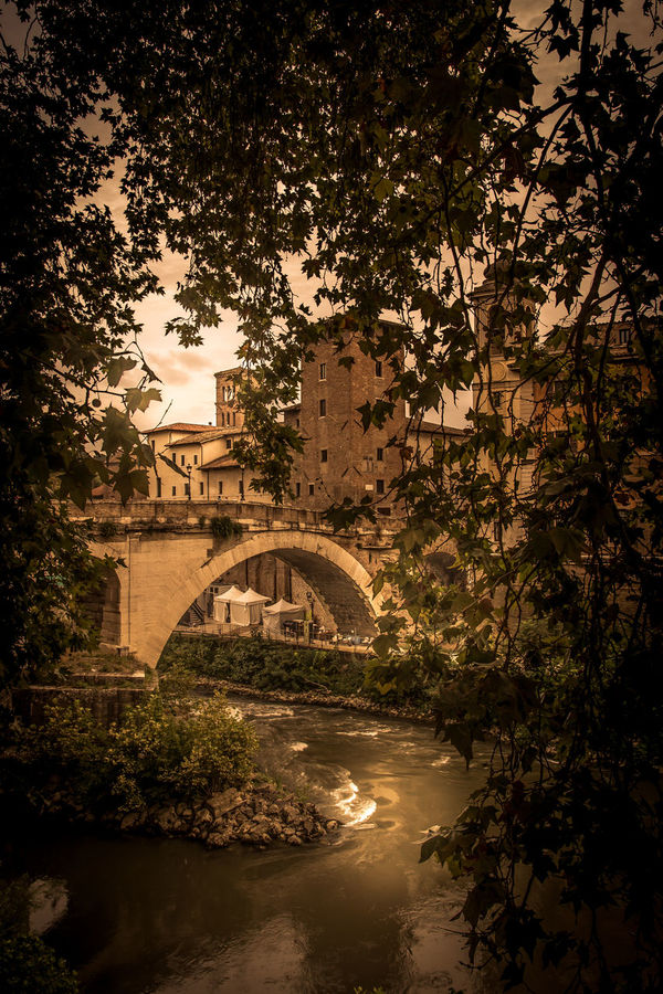 Bridge Eye4photography  EyeEm EyeEm Best Shots EyeEm Gallery EyeEmBestPics Green Tree Trees Water Water Reflections Water_collection Old Bridge Medieval Architecture Medieval Medieval Bridge Medieval Brick Wall
