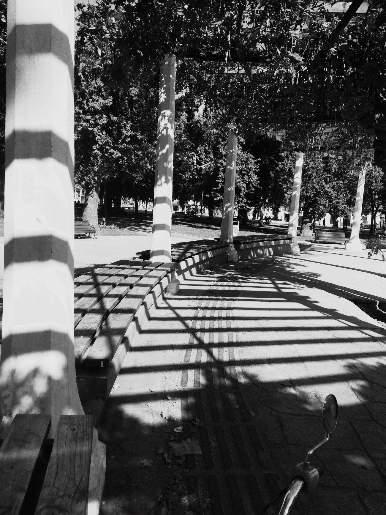 Plaza limache, verano atardecer, romántico