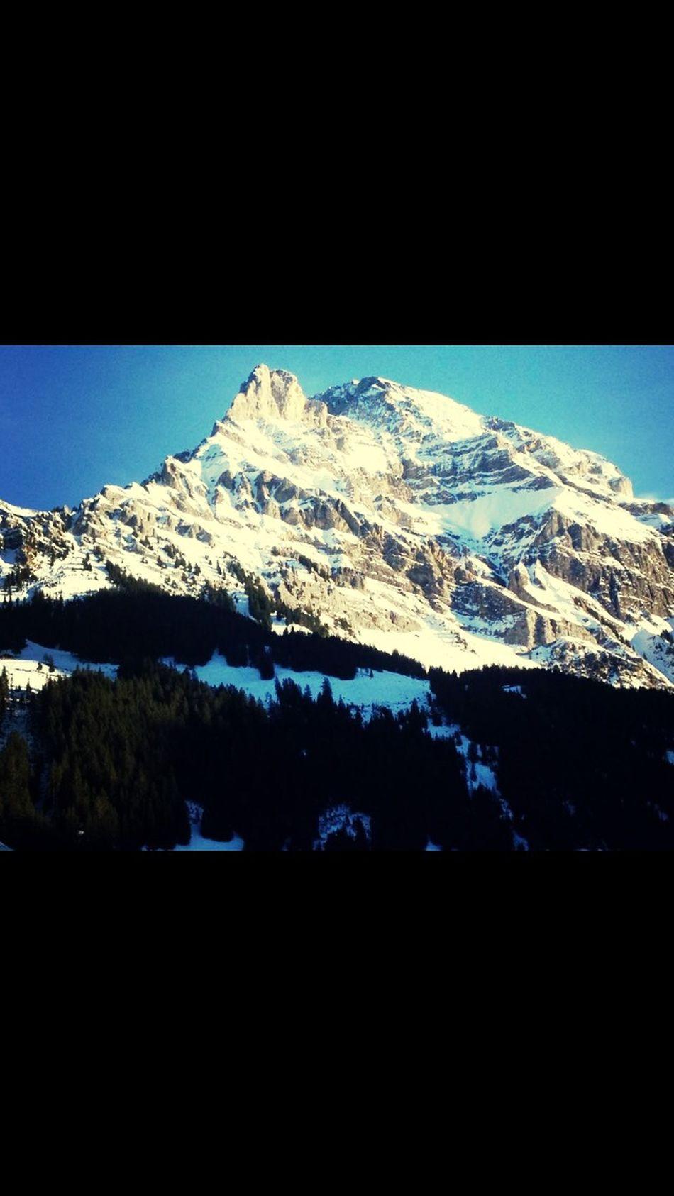 Adelboden Alp Switzerland